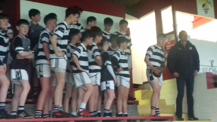 County under 14 hurling champions - Turloughmore