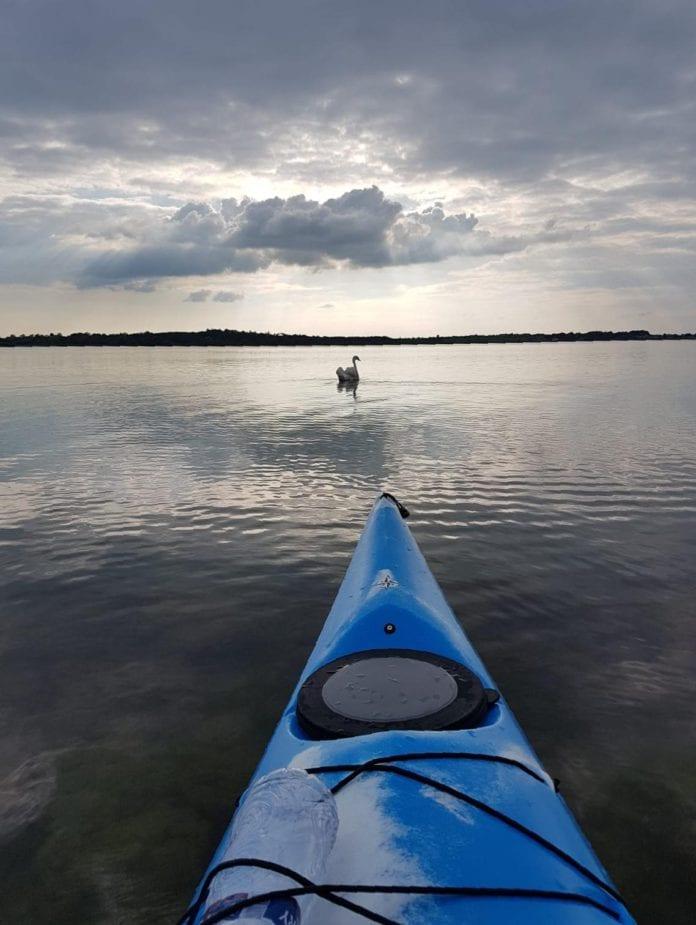 Galway News - Features - Kayak for Arthritis Ireland