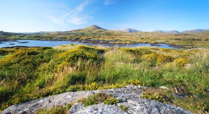 Plean Gníomhaíochta Forbartha ag Údarás na Gaeltachta do Iorras Aithneach- Galway Daily