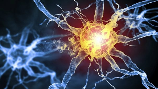 Galway Daily news NUIG leads €4 million project seeking new Multiple Sclerosis treatments