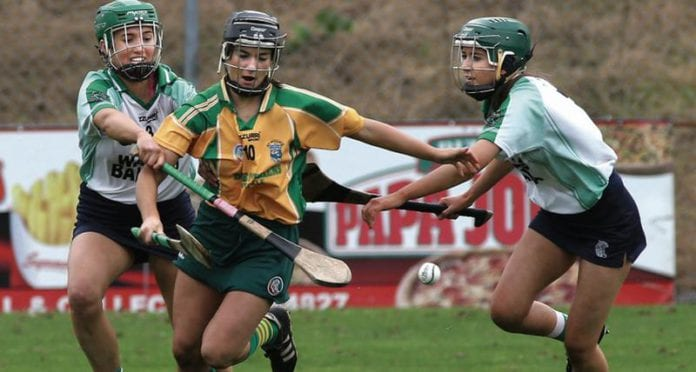 Mullagh Sarsfields camogie