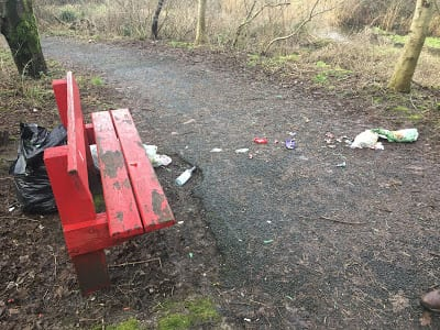 Galway Daily news Community clean up at Terryland Forest park this Saturday