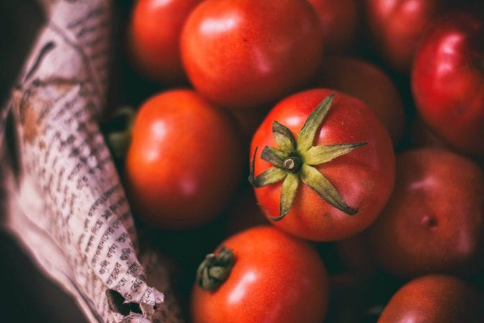 Galway Daily news Researchers from NUI Galway propse using gene editing to create spicy tomatoes.