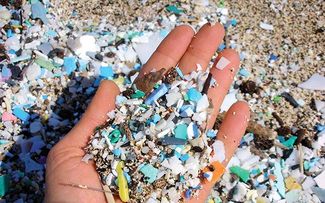 Galway daily news 90% of coastal areas contaminated by microplastics