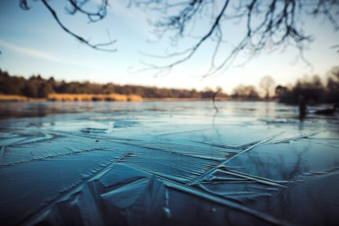 ice swimming world championships