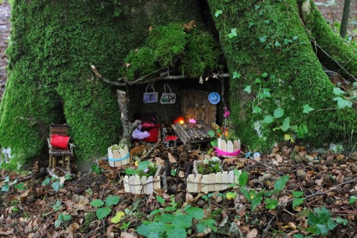 Galway Daily news Journey into an otherworldly place in a Fairy walk through Merlin Woods