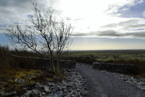 Galway Daily life & style Two new walking trails open for nature lovers in north Galway