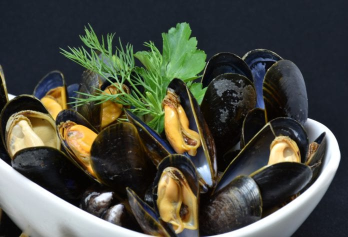Galway Daily news Galway researchers create shellfish tracing tool
