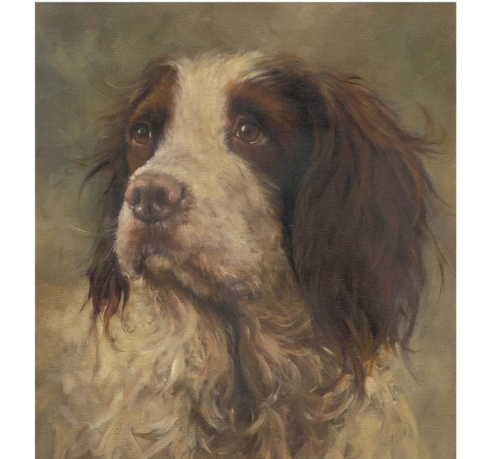 Galway Daily news Top Irish artists donate work for MADRA auction
