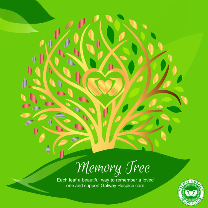 memory tree galway hospice galway daily