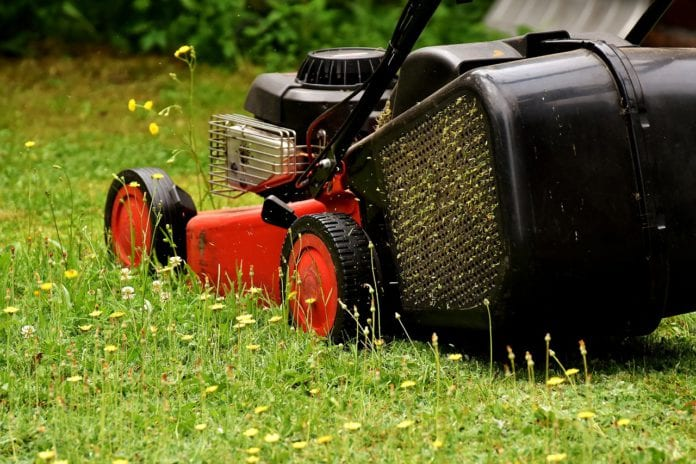 Galway Daily news City council issues new rules for gardening in public areas