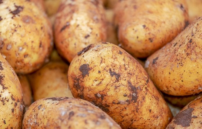 Galway Daily news Met Eireann issues potato blight warning