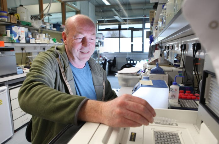 nui galway professor university brian mcstay embo