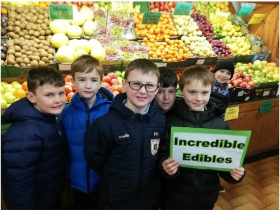 Galway Daily food & drink Two Galway schools claim top prizes in national healthy eating and growing project