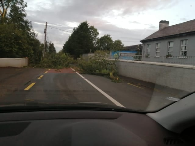 Galway Daily news Fallen trees reported across Galway as Storm Ellen cleanup begins