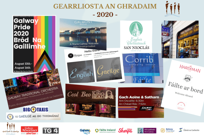 galway daily news gradam shortlist 2020 final