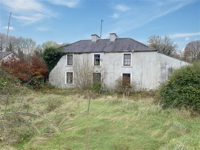 Galway Daily property Country farmhouse is a dream restoration project