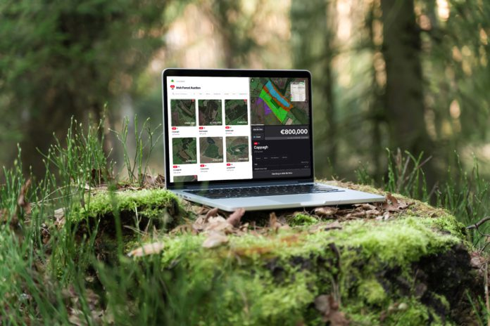 Galway Daily news Galway company helping to revolutionise forestry market