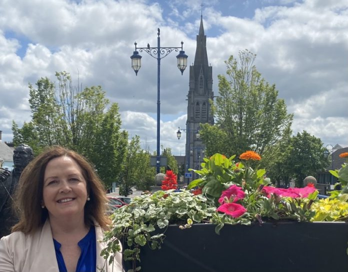 galway daily news cllr calls for pollination zones
