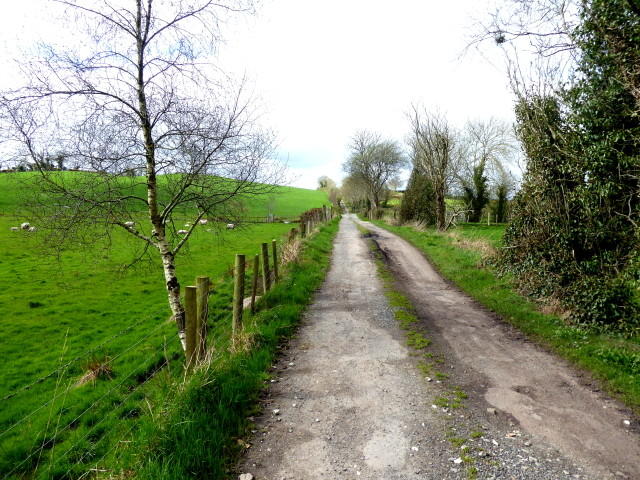 galway daily news road sean canney call for funding country road in galway