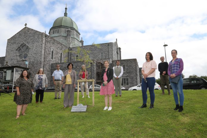 galway daily news Members of NUI Galway Mincéirs Whiden Society and public representatives