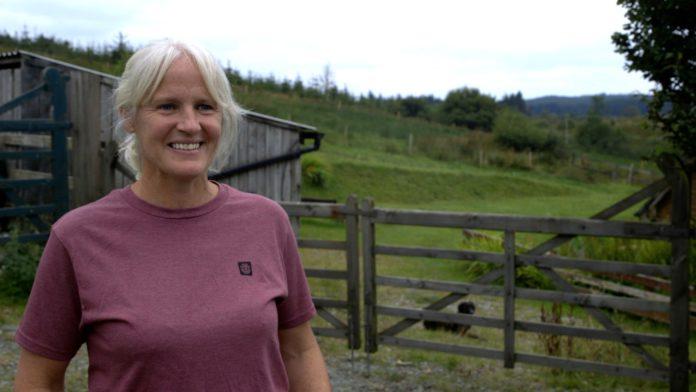 galway daily news farmer nia o'malley on galway farm