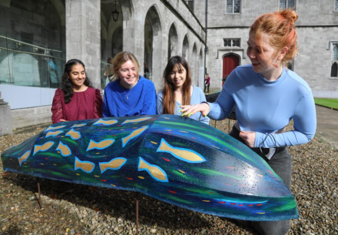 galway daily news currachs arrive at NUI Galway for special exhibition